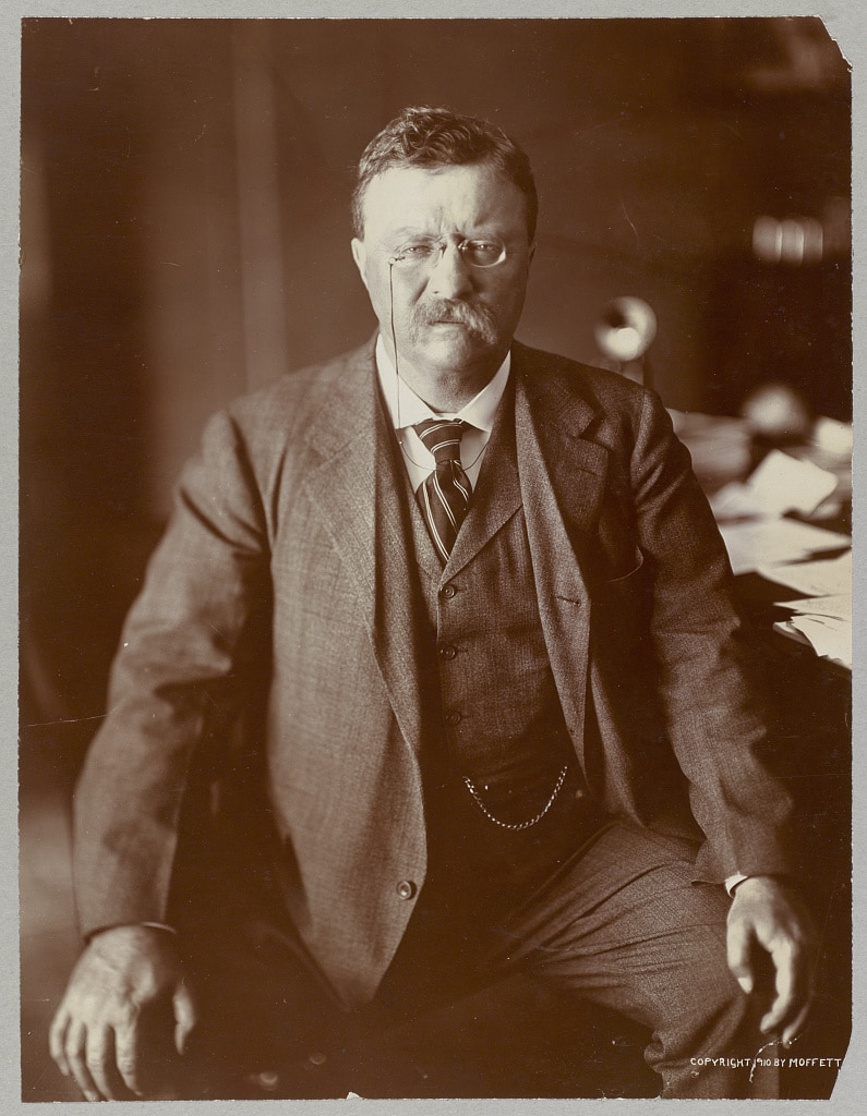 president theodore roosevelt portrait suit eyeglasses