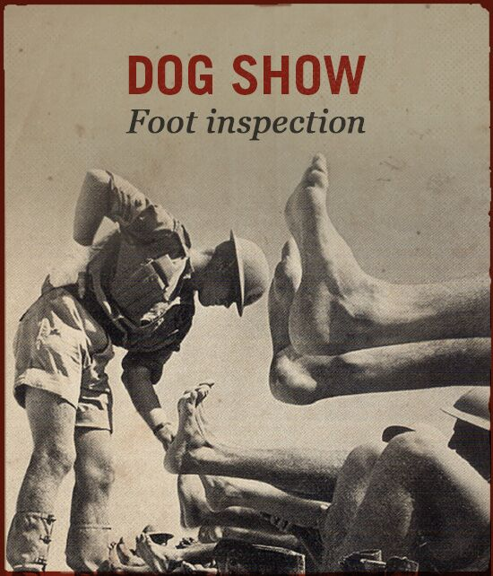 Dog show WWII slang foot inspection.