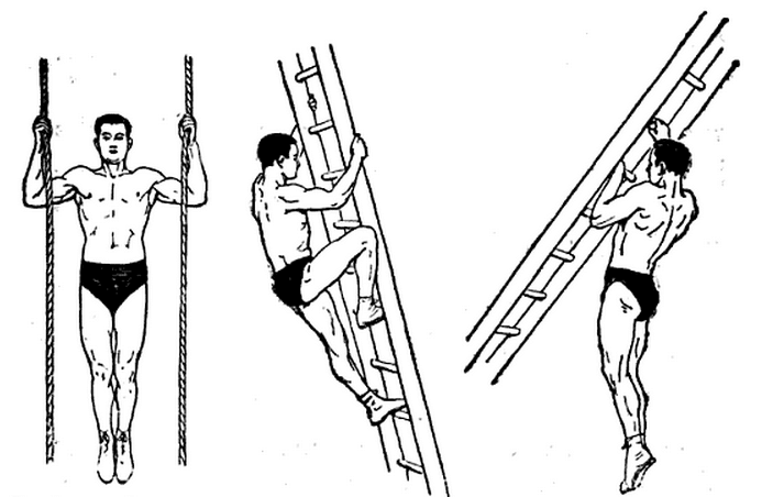 Georges Hebert history parkour natural method obstacles.