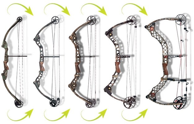 Limbs on compound bows d-shape parallel.