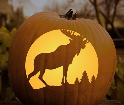 moose pumpkin carving stencil manly halloween