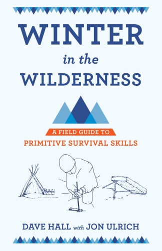 winter in the wilderness book cover dave halll