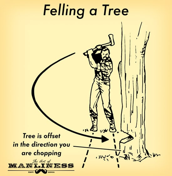 A man felling a tree with an axe illustration.