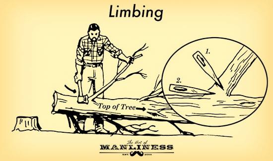 Limbing 1