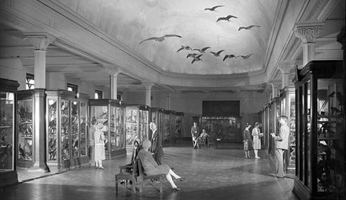 vintage museum people in open hallway with specimens