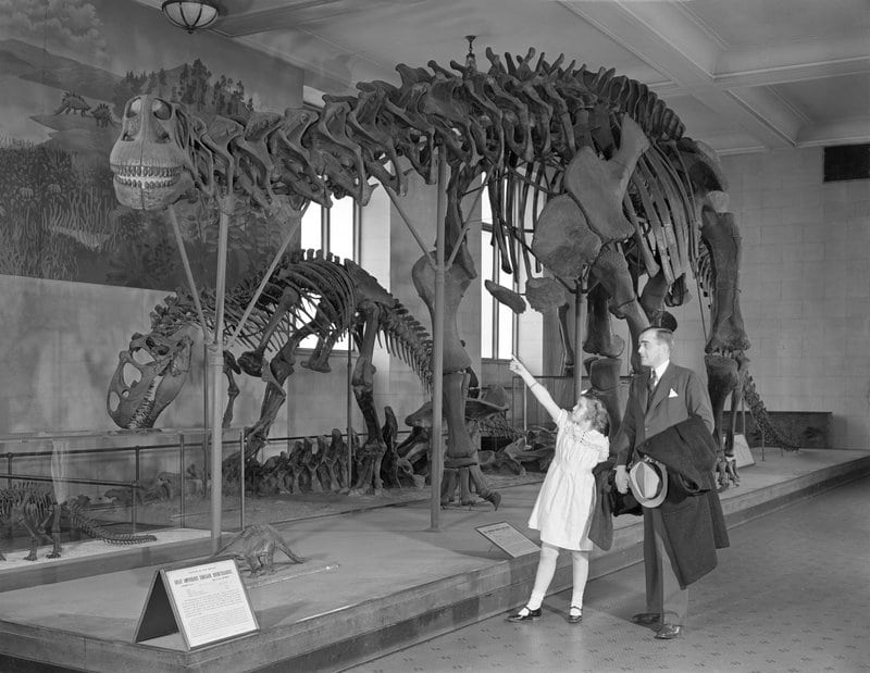 Vintage man with daughter looking at dinosaur skeleton in museum.