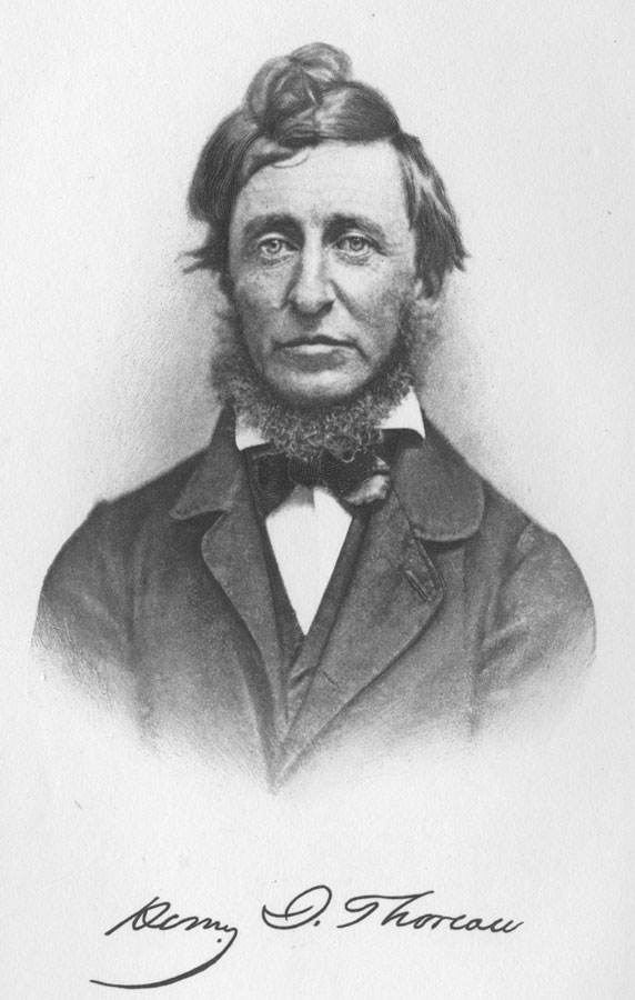 henry david thoreau black white portrait drawing