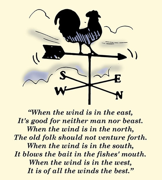 weather vane wind direction proverb illustration