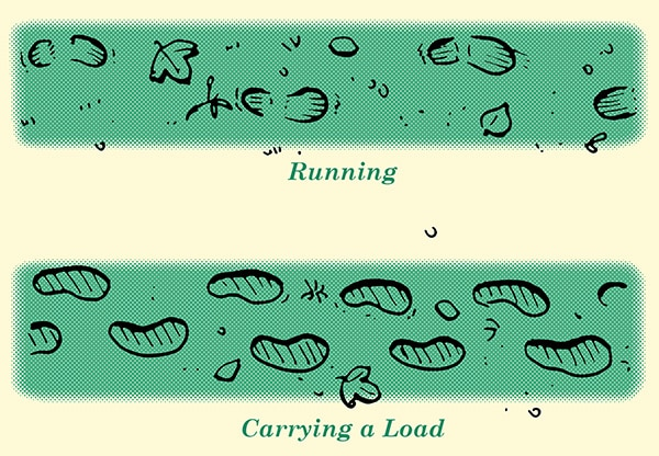 determining meaning in footprints when tracking humans illustration