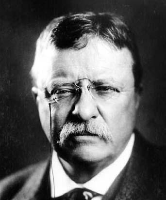 Teddy Roosevelt mustache famous manliest facial hair.