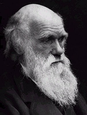 elderly charles darwin beard famous facial hair