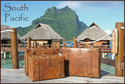 Leather suitcase in south pacific illustration.