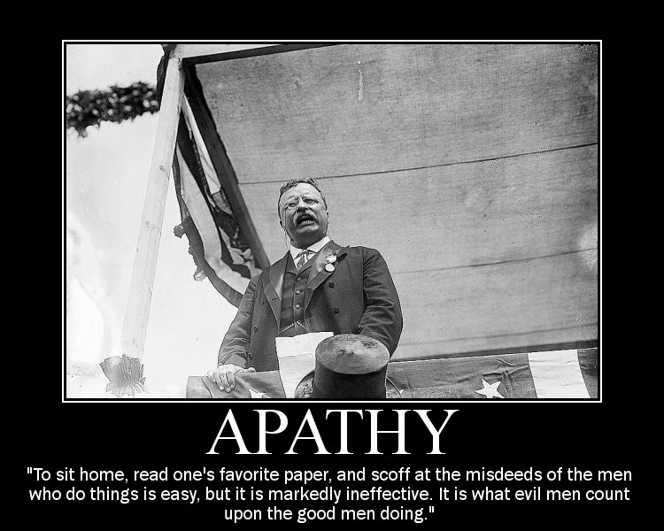 Motivational quote about Apathy by Theodore Roosevelt.