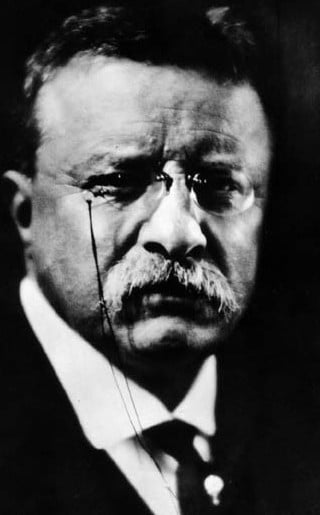 President Theodore Roosevelt head shot with glasses and mustache.
