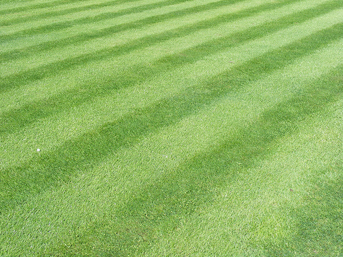 striped grass mowing pattern