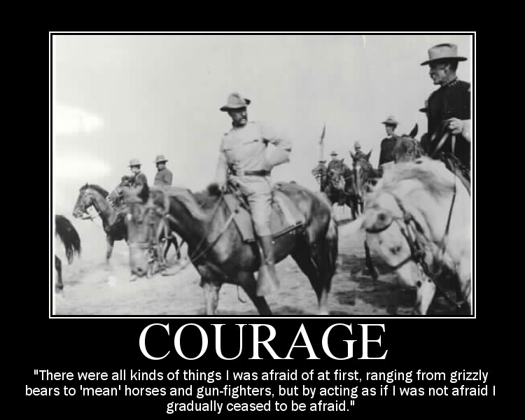 theodore roosevelt fear courage quote motivational poster