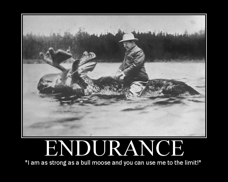 Motivational quote about Endurance by Theodore Roosevelt.