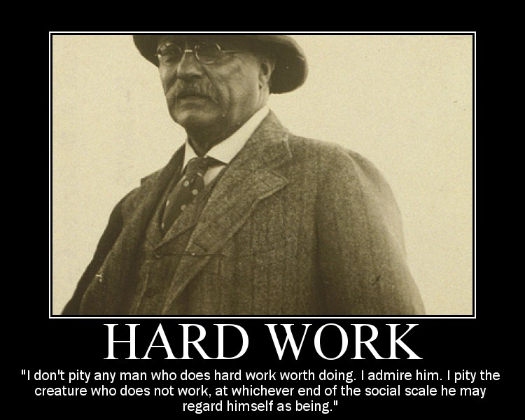 Motivational quote about Hard Work by Theodore Roosevelt.