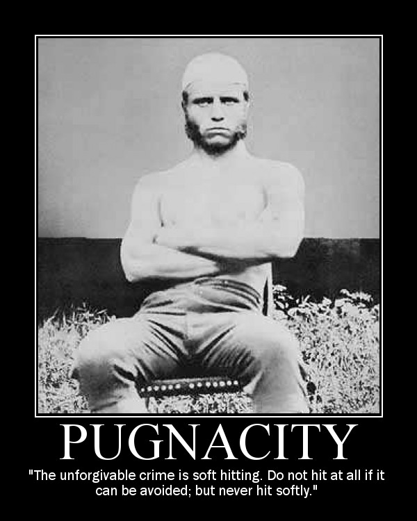 Motivational quote about Pugnacity by Theodore Roosevelt.