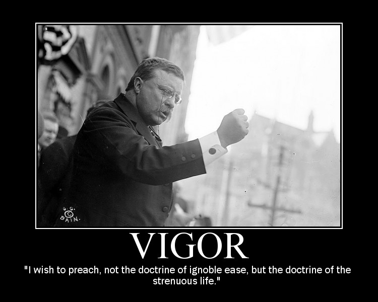 Motivational quote about Vigor by Theodore Roosevelt.