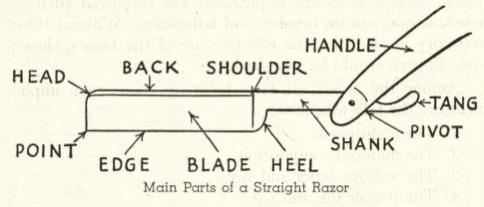 Illustration of razor anatomy.