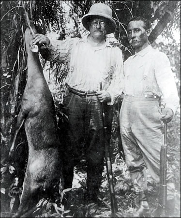 Roosevelt on the left with a deer he had shot and Candido Rondon is on the right.
