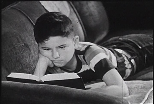 Boy reading a book while lying on sofa.