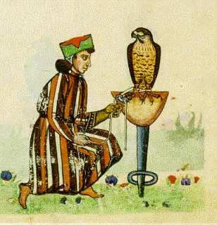 Falconry court with man illustration.