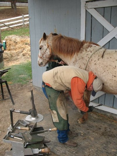 farrier putting shoes on horse blue collar trade