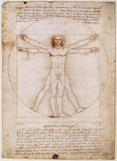 vitruvian man renaissance old sheet of paper drawing