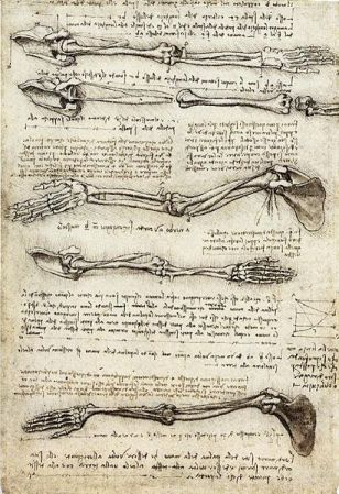 Da Vinci notebook about human anatomy.