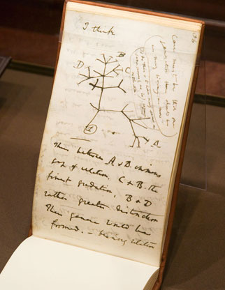Charles Darwin pocket notebook.