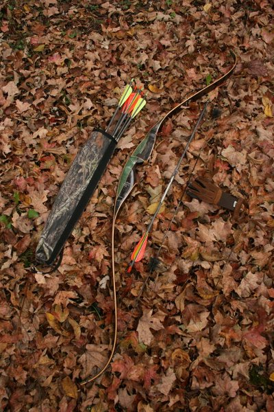 Bow, arrows and gloves placed on the ground covered with leaves.