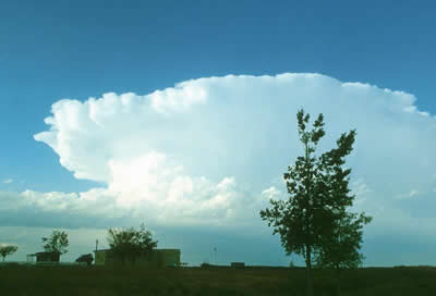 nimbus clouds example identify forecast weather