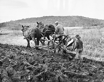 Rear view of a man plowing a field with his son