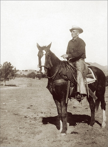 vintage cowboy on horse in pasture open field