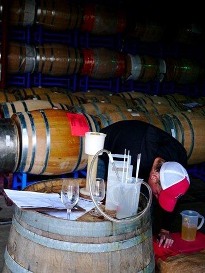 wine barrel room testing white wine fermentation