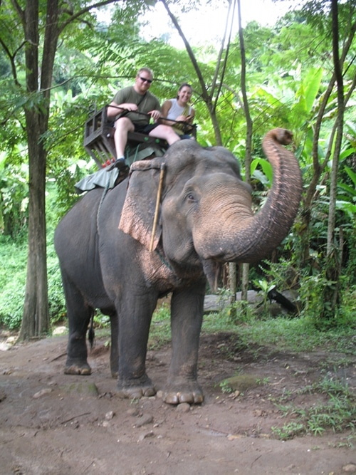 Casey Burgener and Natalie riding elephant in thailand jungle.