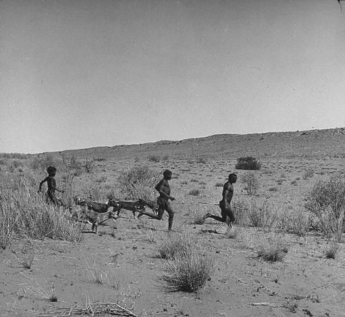 Men running in brush fields along with animals.