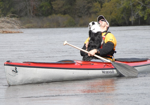 dog jumping on man in kayak on water