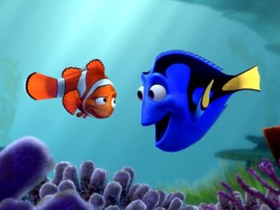 Finding nemo movie clown fish with dory.