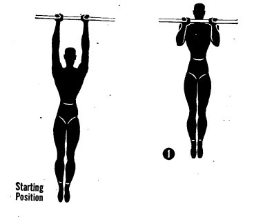 How to perform pull ups illustration military manual.