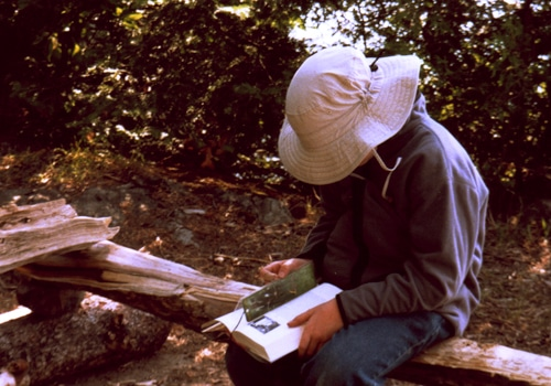 A man sitting on a tree log and reading a book.