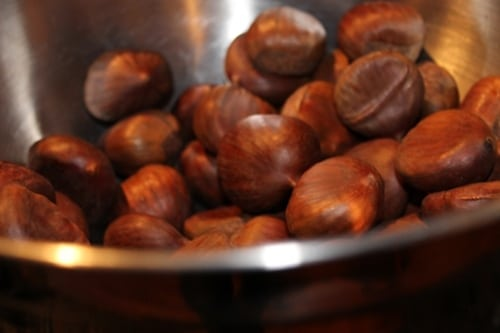 chestnuts close up photo for roasting in fireplace