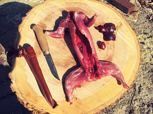 A squirrel and liver and a knife placed on wood log.