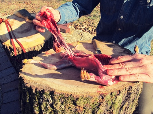 A man pulled out the entrails with fingers.
