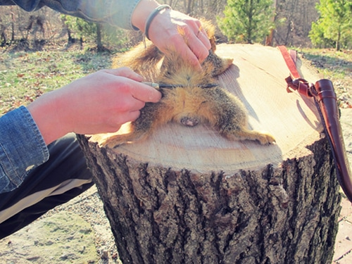 A man cutting tail of a squirrel.