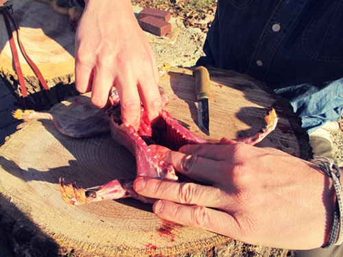 A man removing the entrails.