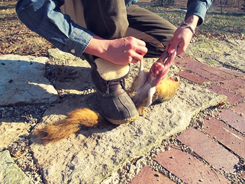 A man removing the skin of squirrel.