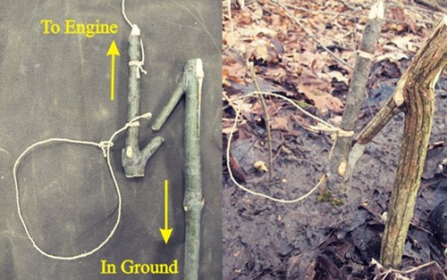 Y stick noose for snare hunting.
